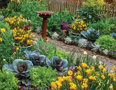 No this isn't my yard, but maybe someday it will look this good! Notice a few pots in amongst the planted ones.